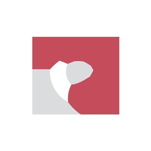 Logogestaltung Dirk Frowein